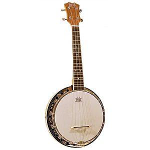 Banjo& Case 19 Fred Barnes & Mullins
