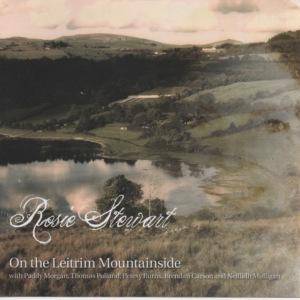R Stewart - On The Leitrim Mountainside