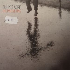 Bullys Acre - The Twelve Pins